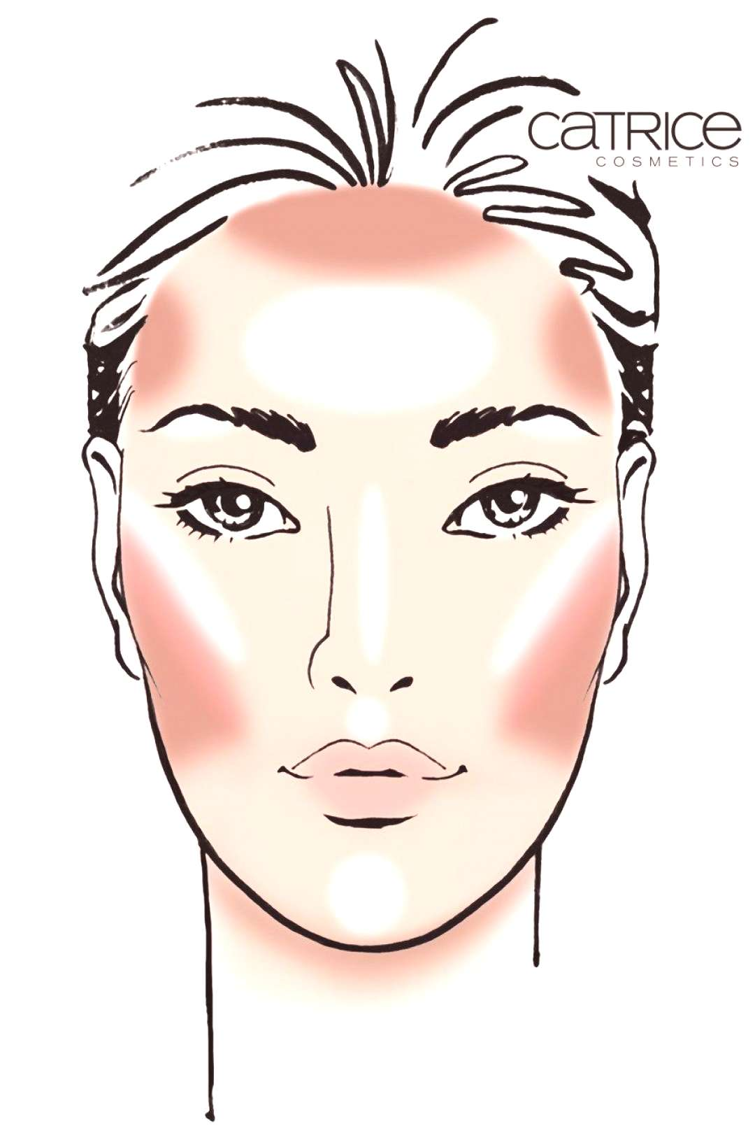 / ... contouring an OVAL face, including blush - © c ... -   / … Contouring an OVAL face, inclu