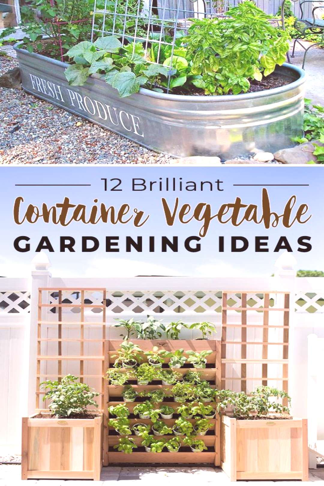 12 Brilliant Container Vegetable Gardening Ideas!,