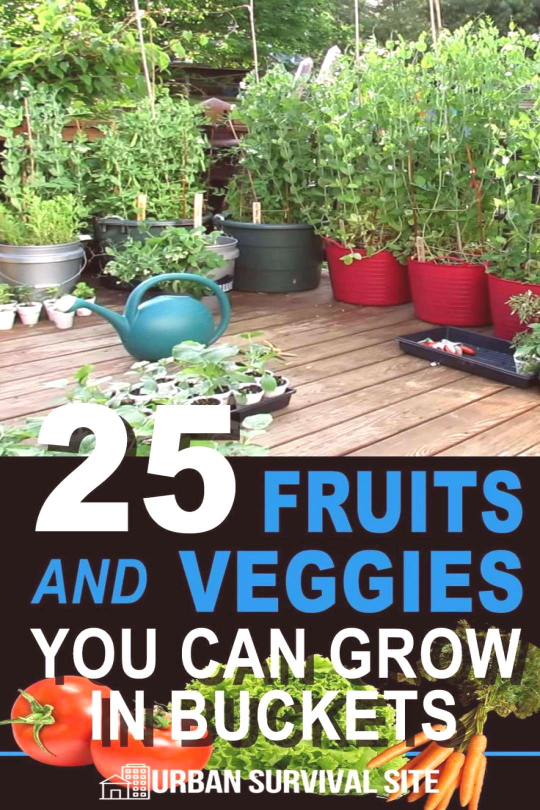 25 Fruits and Vegetables you can grow in buckets!