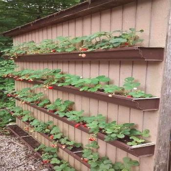 20+ Comfy Diy Raised Garden Bed Ideas That Look Cool - 1024 x 1824 20+ Com ...#b...#bed