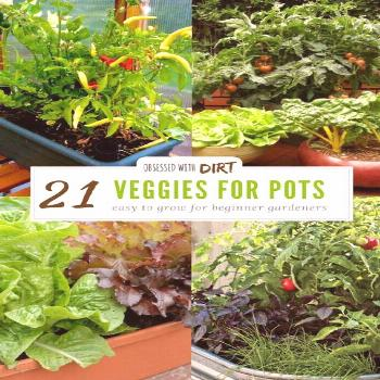 21 Best Container Gardening Vegetables and Pot Friendly Fruits