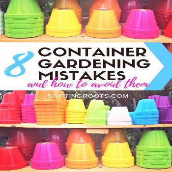 Container gardening in pots on your patio seems easy, but it can be tricky for beginners!!  Here's