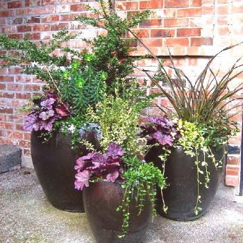 Container gardens become the expression of your style and create an inviting atmosphere -