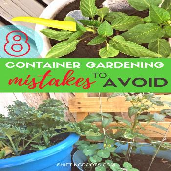 Do you dream of having a container vegetable garden on your patio, balcony, or other small space? G