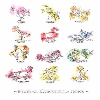 'Floral Constellations - Chromatic' Poster by zoazig,  'Floral Constellations - Chromatic' Poster b