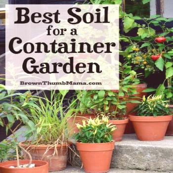 It's important to choose the right soil for your container garden, so your vegetables will grow w