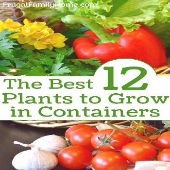 You can grow vegetables in pots in your own container garden even if you are a beginner gardener. Y