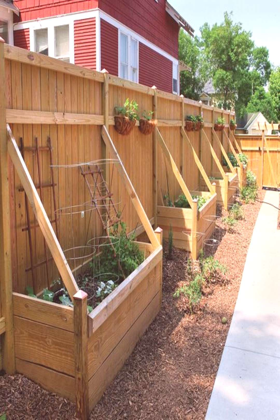 Build a container garden for vegetable gardening using full sun perennials and root vegetables. - G