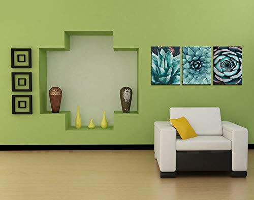Canvas Wall Art Contemporary Simple Life Blue Agave