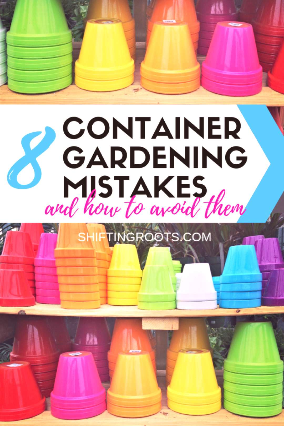 Container gardening in pots on your patio seems easy, but it can be tricky for beginners!! Here's 8