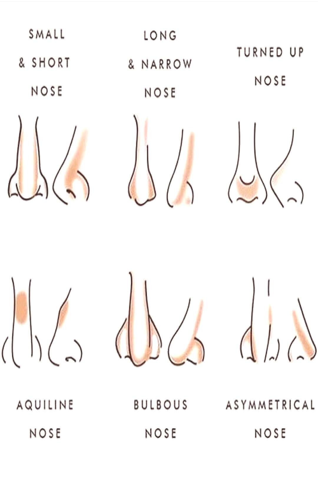 different-types-of-nose-contour face