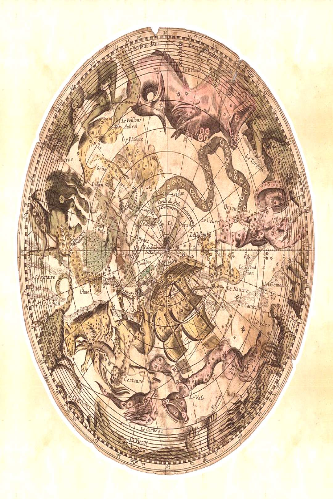 Drawing - Illustrated Map Of The Constellations - Celestial Map - Celestial Atlas - Antique Histori