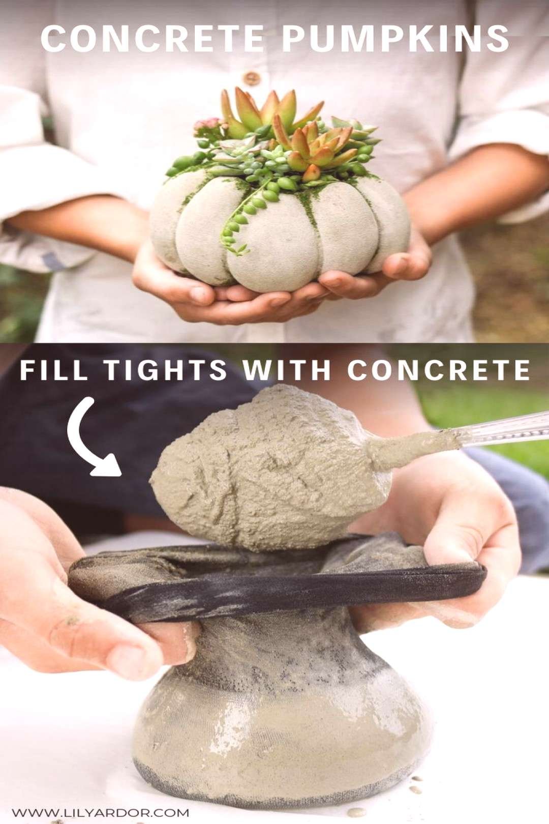 Heres how you can make easy concrete pumpkin by fill up tights. Takes about 20 minutes to make.