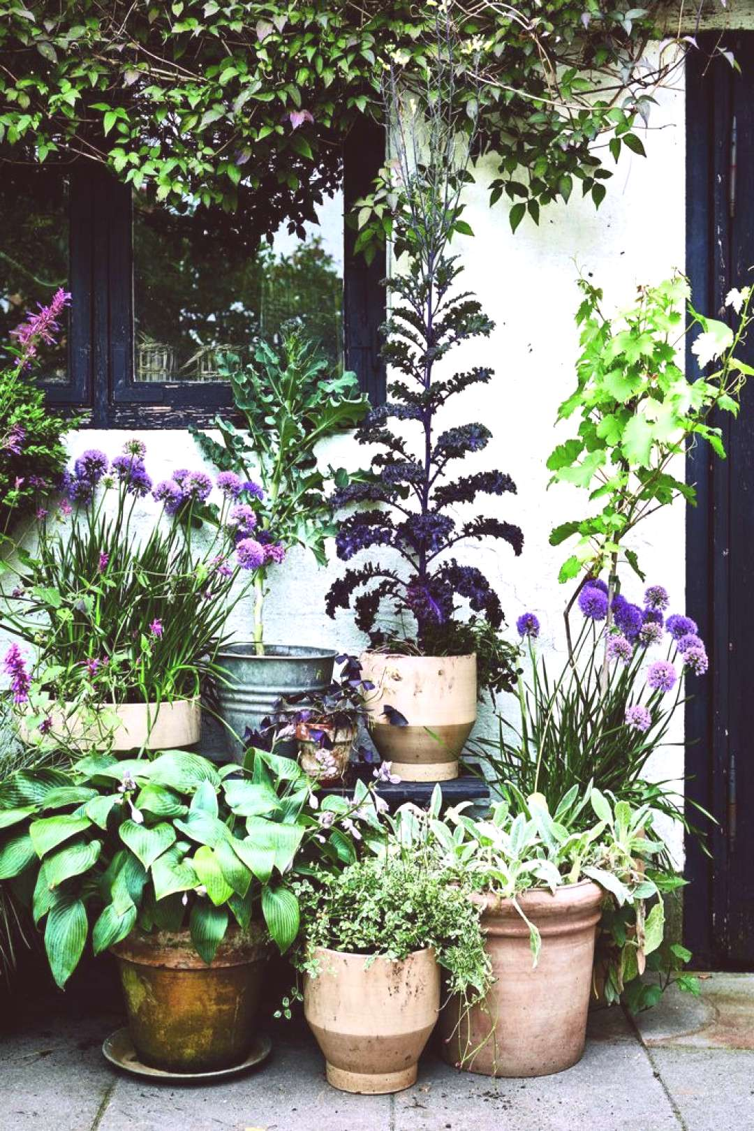 If you only have a small garden, courtyard or balcony, experimenting with container gardening is wo