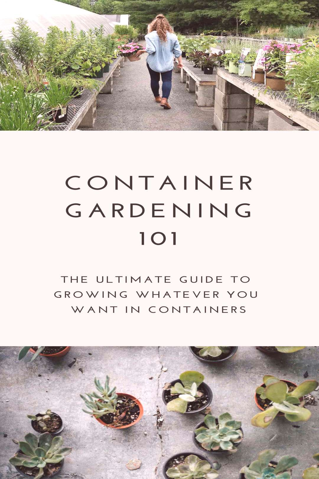 Learn how to grow whatever you want in containers - The Ultimate Beginners Guide To Container Garde