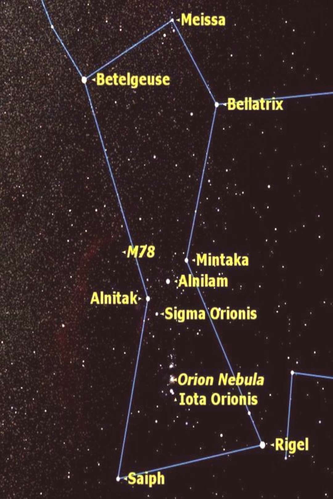 Orion is the brightest and most beautiful of the winter constellations, full of ..., - Orion is t