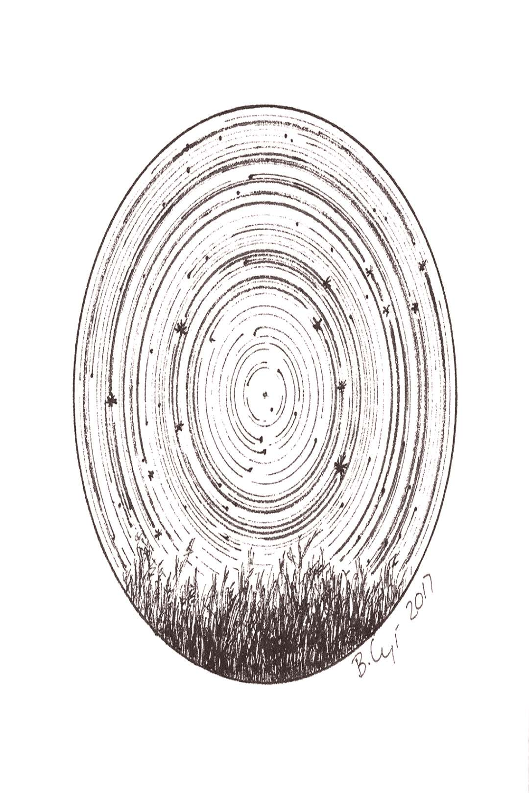 Star trails - Zodiac Constellations - Pen and Ink Drawing Prints,  -  Star trails – Zodiac Conste